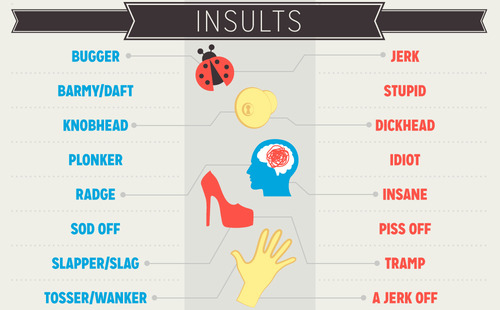 Insults and swear words